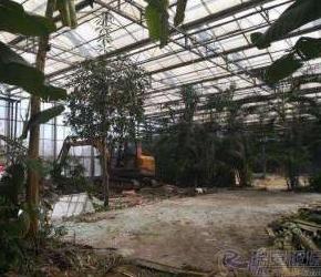 瑞安雅林、绿健等多家观光园被拆!