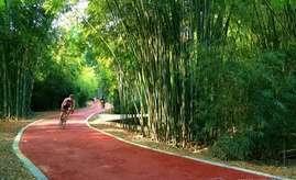 飞云江绿道当选温州市最美绿道
