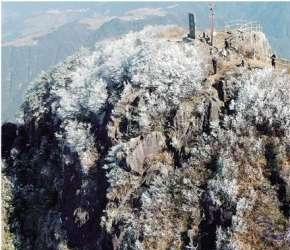 瑞安金雞山風景區出現霧凇奇觀