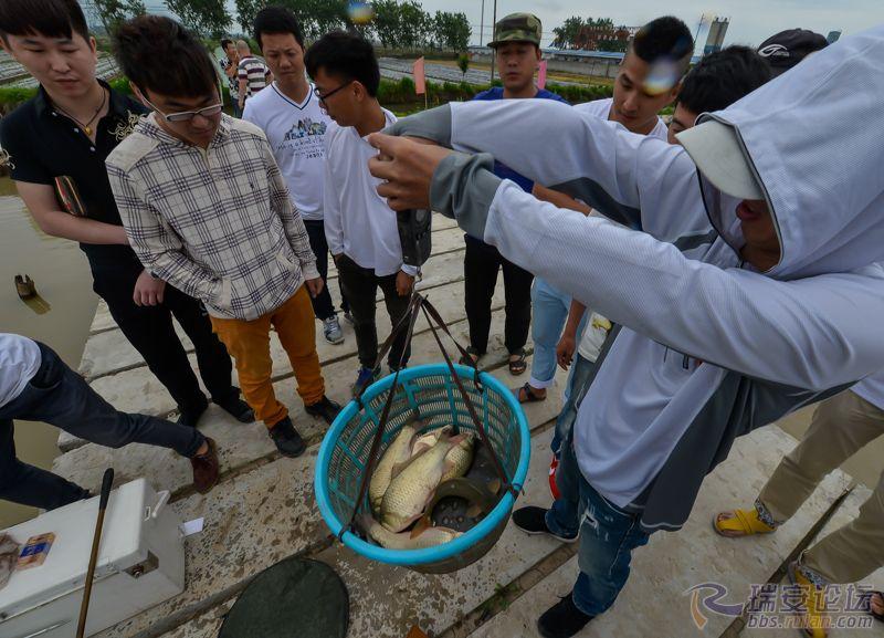 鱼获5.jpg