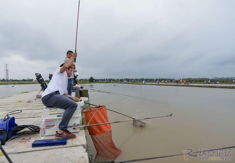 渔夫中了.jpg