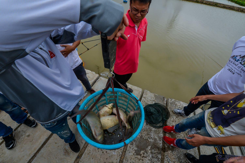 鱼获1.jpg