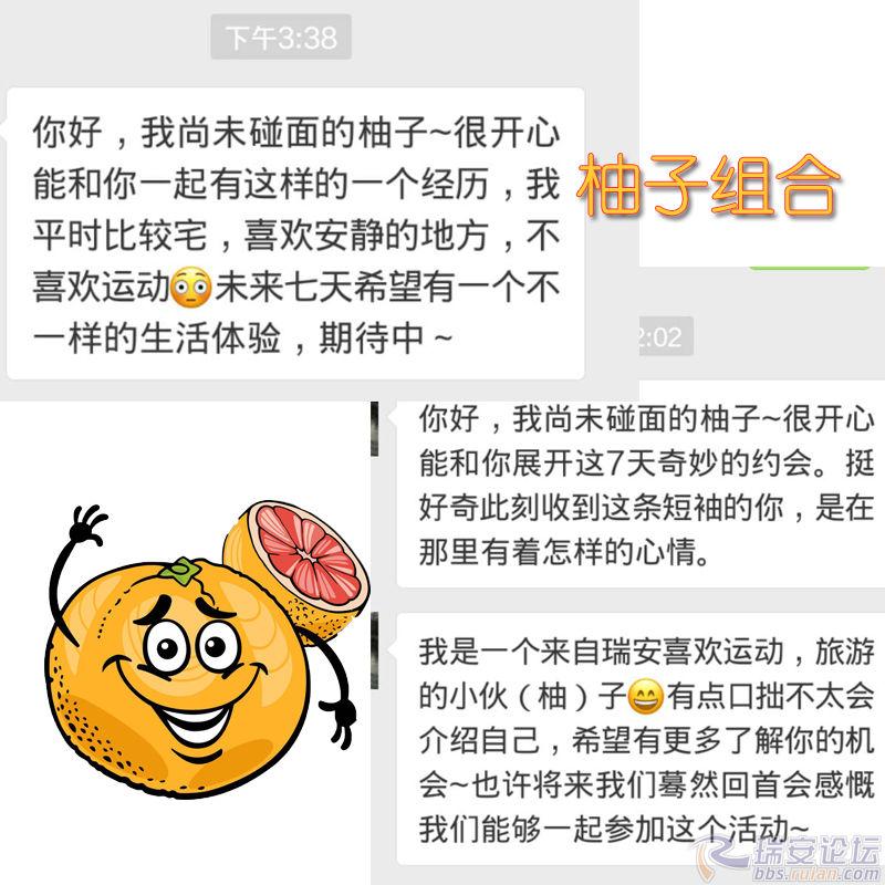 柚子组合.jpg
