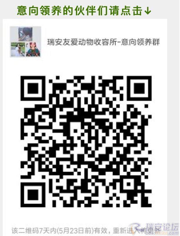 QQ图片20180518171247.jpg