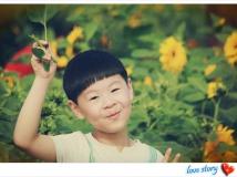 周末带儿子去雅林看向日葵