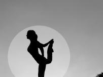 瑜伽之美(之二)