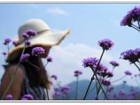 观美赏花归来!