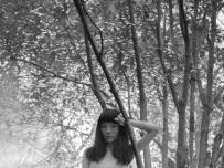 迷失的森林.午后