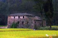 湖岭六科风景
