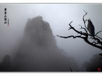 雾里三清山风光