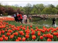 杭州太子湾公园
