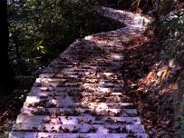 神奇的山路