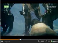 讨教个拍摄问题——关于莫斯科红场阅兵视频中的一个镜头