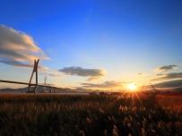 日落、芦苇、云江三桥。